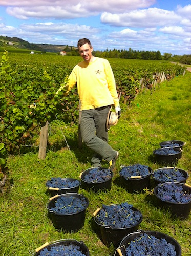 Eric standing with some Pinot Noir grapes.